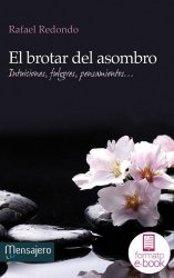 El brotar del asombro (Ebook)